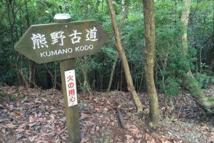 Wandern auf dem Kumano Kodo