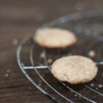 Rezepte für Weihnachtsplätzchen: Snickerdoodles