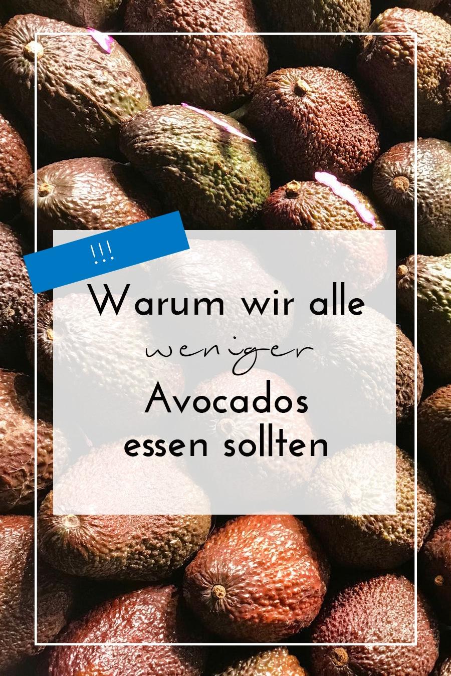 Warum wir weniger Avocados essen sollten